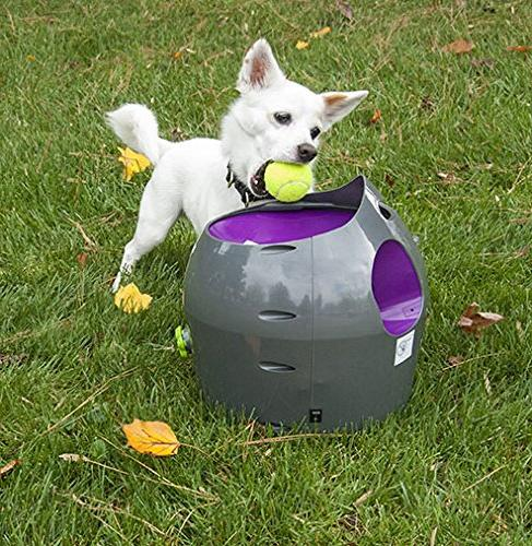 PetSafe Automatic Ball Dog Toy, Throwing in Packaging
